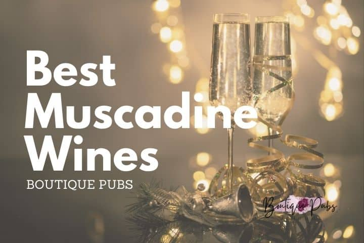 list of the best Muscadine wines