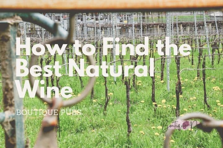 How to Find the Best Natural Wine