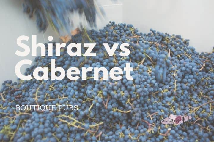 Shiraz vs Cabernet