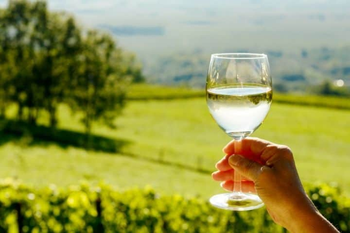 Why Not Expose Wine to Fresh Oxygen
