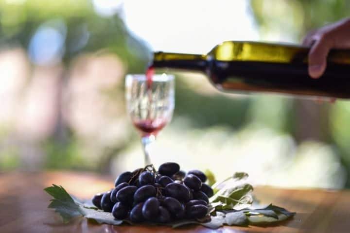 best organic wine varities